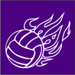flame-purple-volleyball